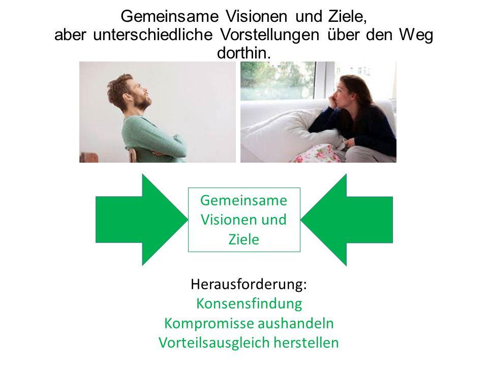 Gemeinsame Visionen und Ziele, aber unterschiedliche Vorstellungen über den Weg dorthin.