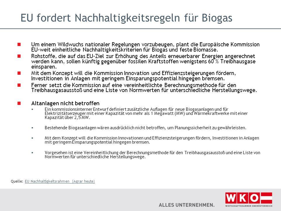 EU fordert Nachhaltigkeitsregeln für Biogas