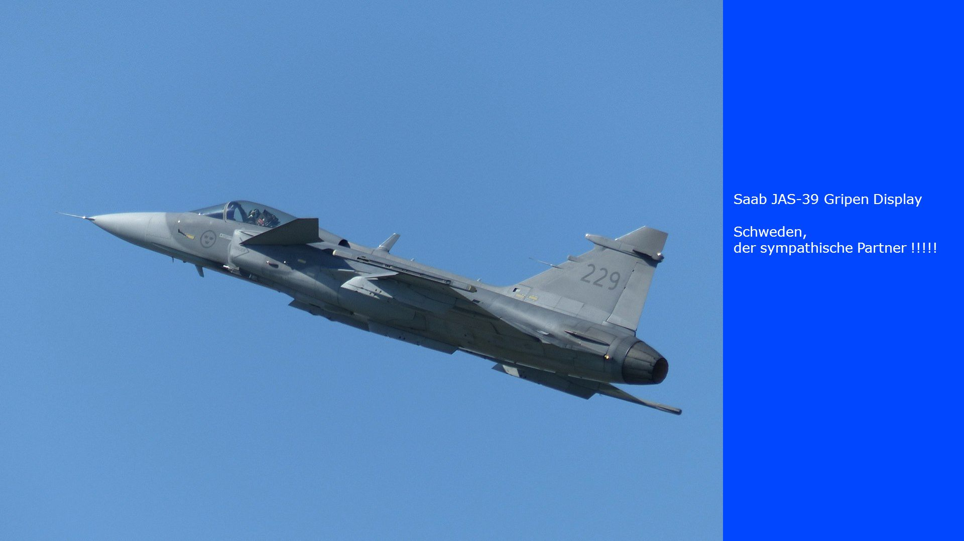 Saab JAS-39 Gripen Display