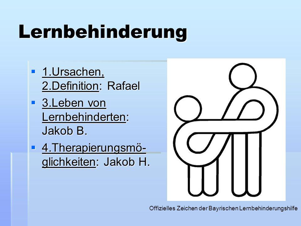 Lernbehinderung 1.Ursachen, 2.Definition: Rafael