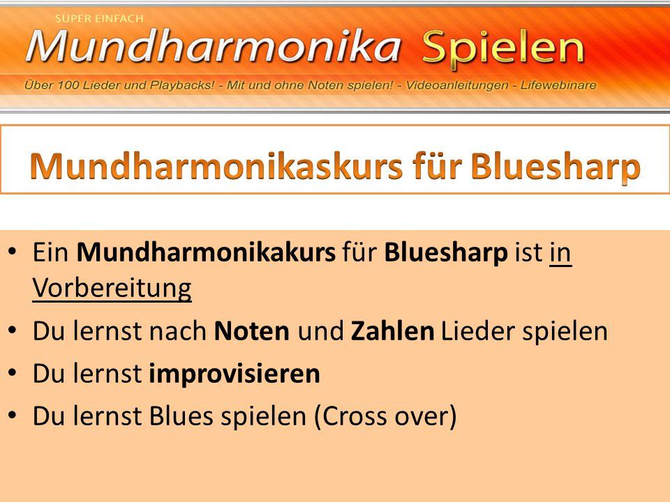 Mundharmonikaskurs für Bluesharp