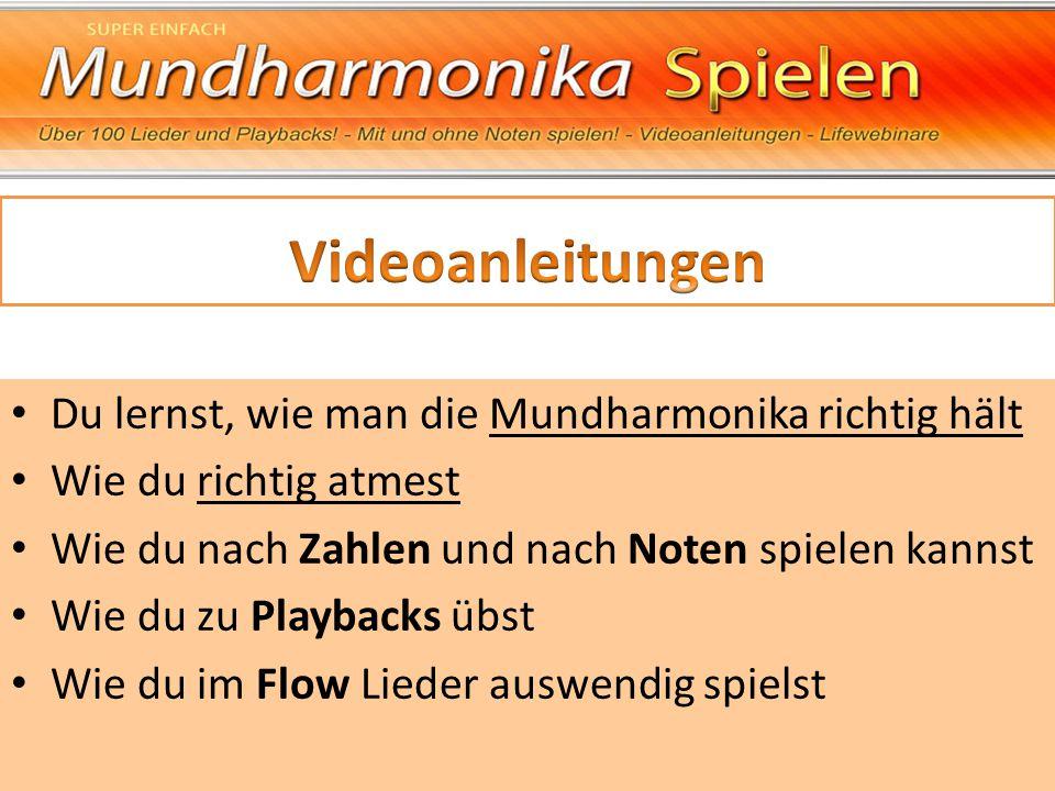 Videoanleitungen Du lernst, wie man die Mundharmonika richtig hält