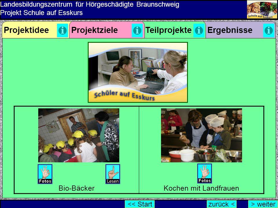 Projektidee Projektziele Teilprojekte Ergebnisse Bio-Bäcker