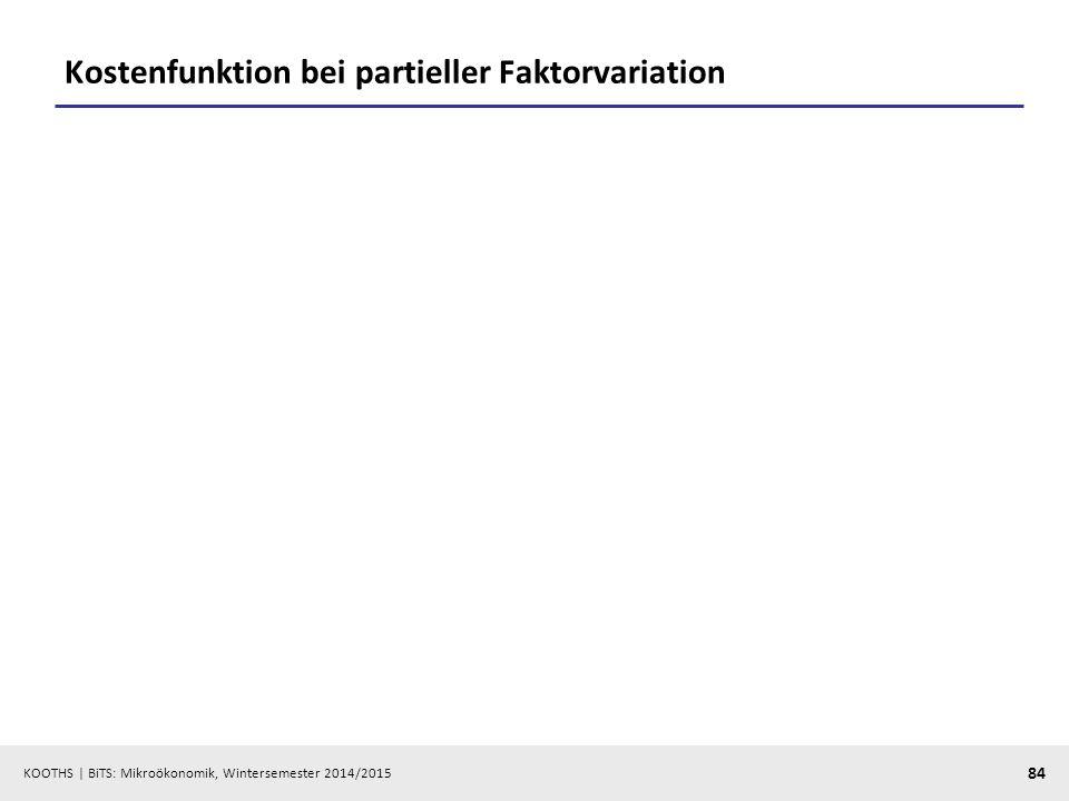 Kostenfunktion bei partieller Faktorvariation