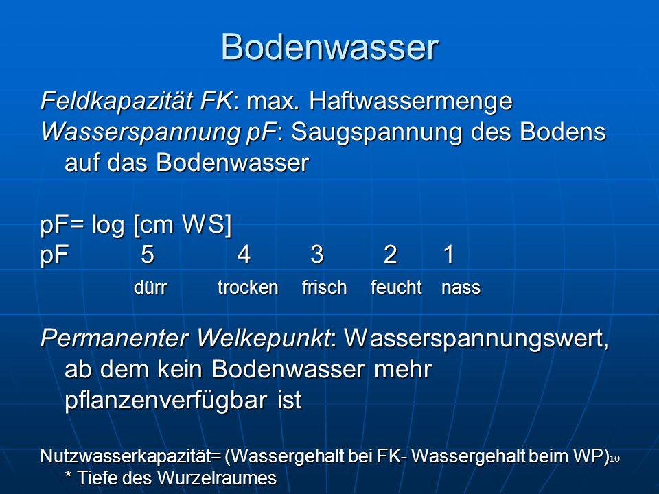 Bodenwasser Feldkapazität FK: max. Haftwassermenge