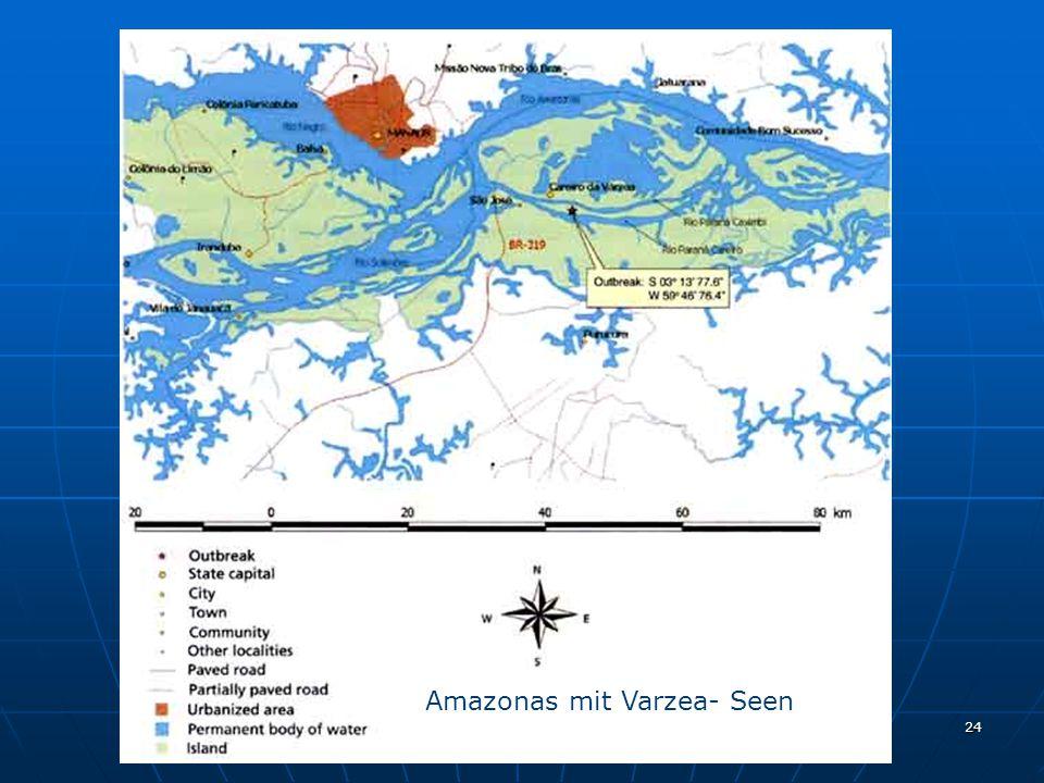Amazonas mit Varzea- Seen