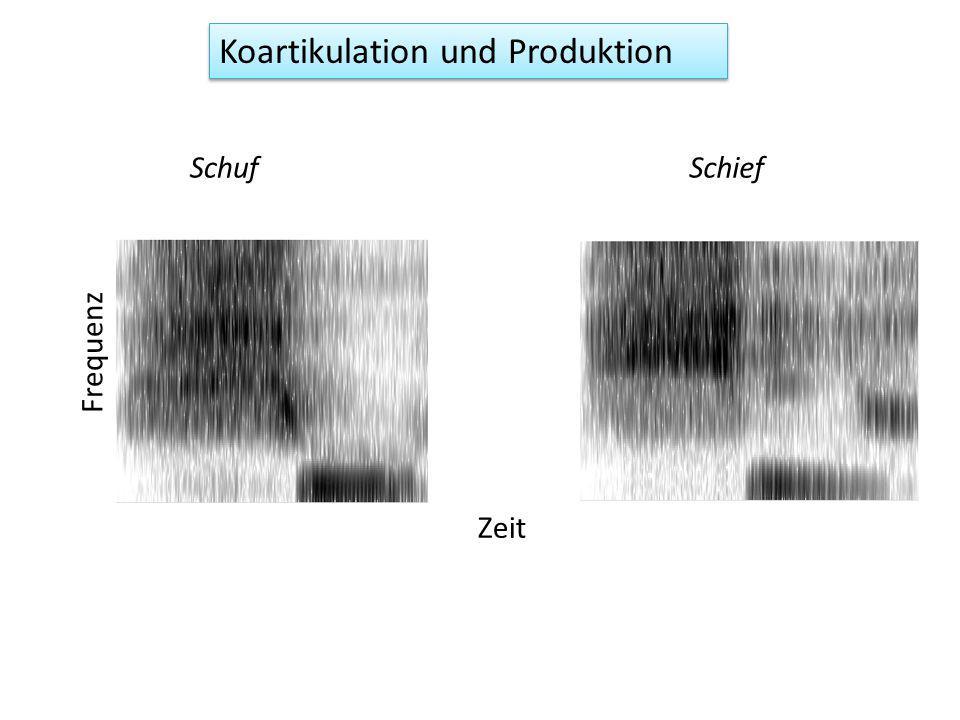 Koartikulation und Produktion