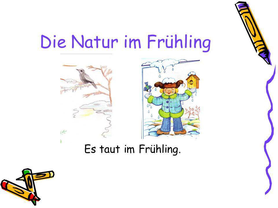 Die Natur im Frühling Es taut im Frühling.