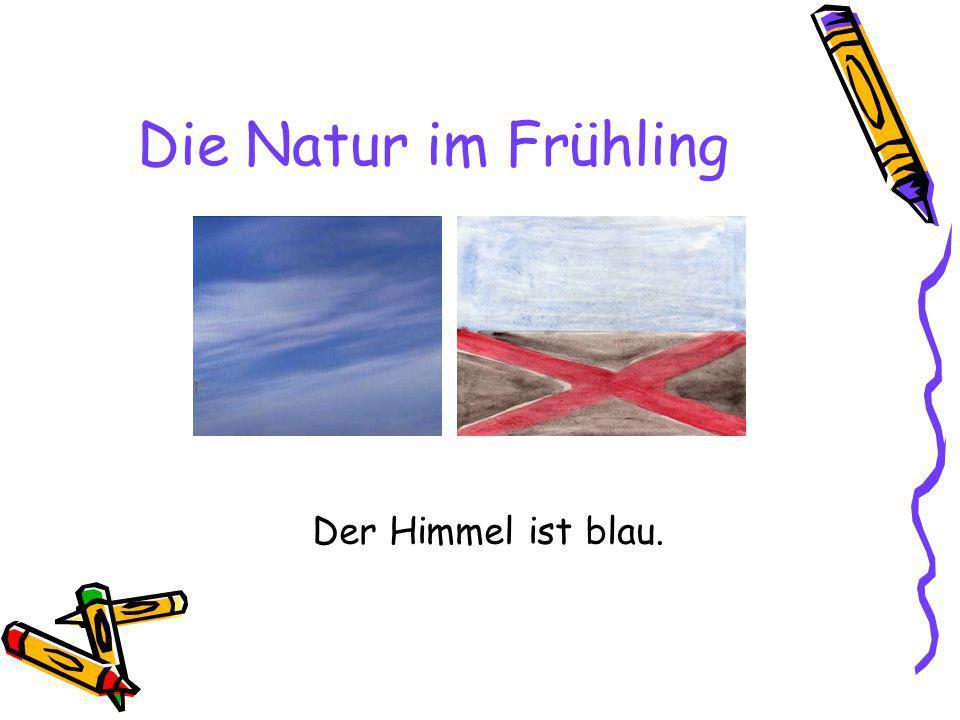 Die Natur im Frühling Der Himmel ist blau.