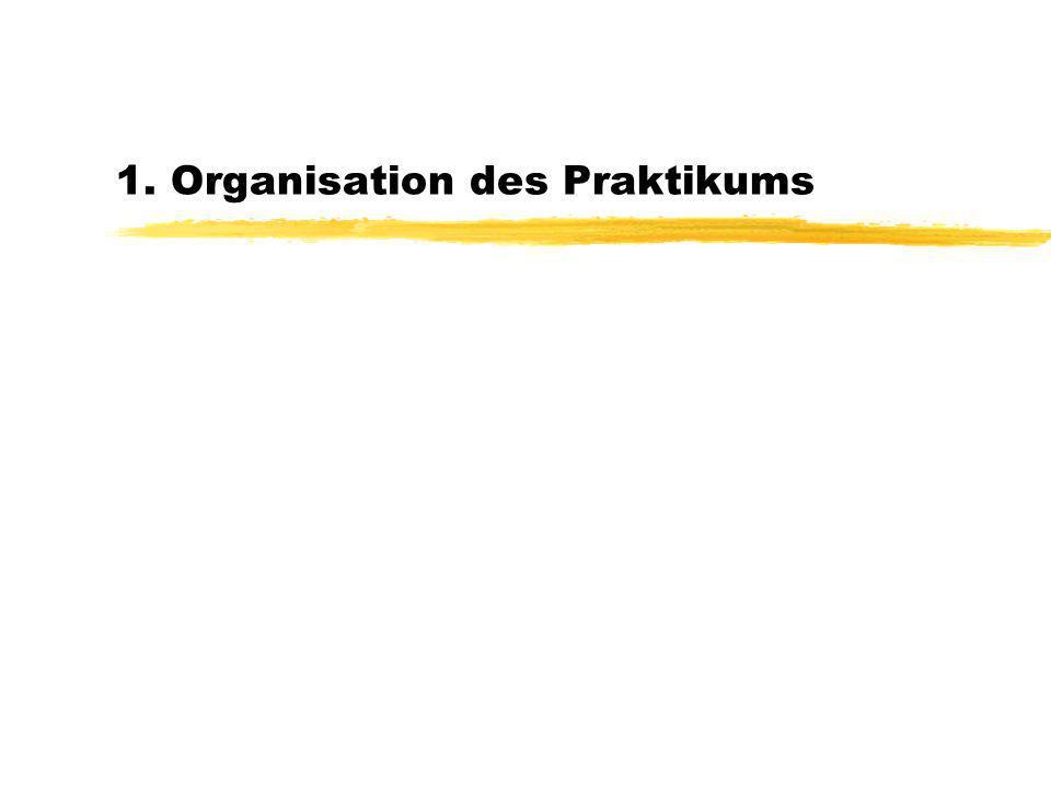 1. Organisation des Praktikums