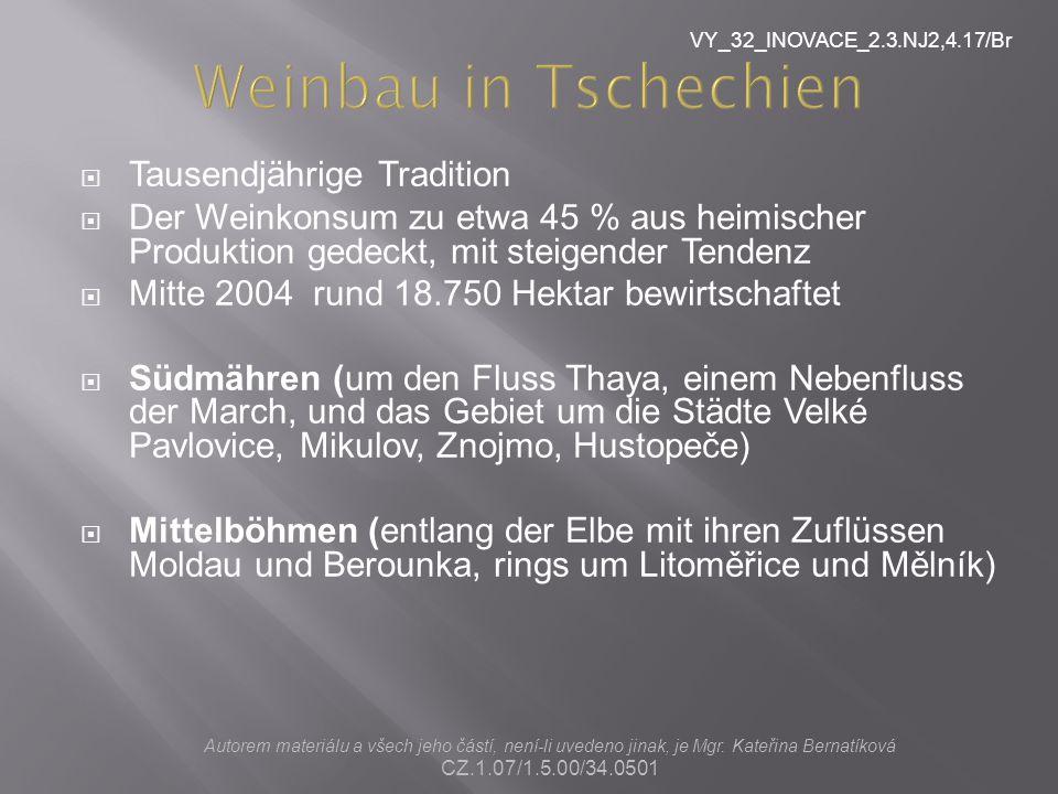 Weinbau in Tschechien Tausendjährige Tradition
