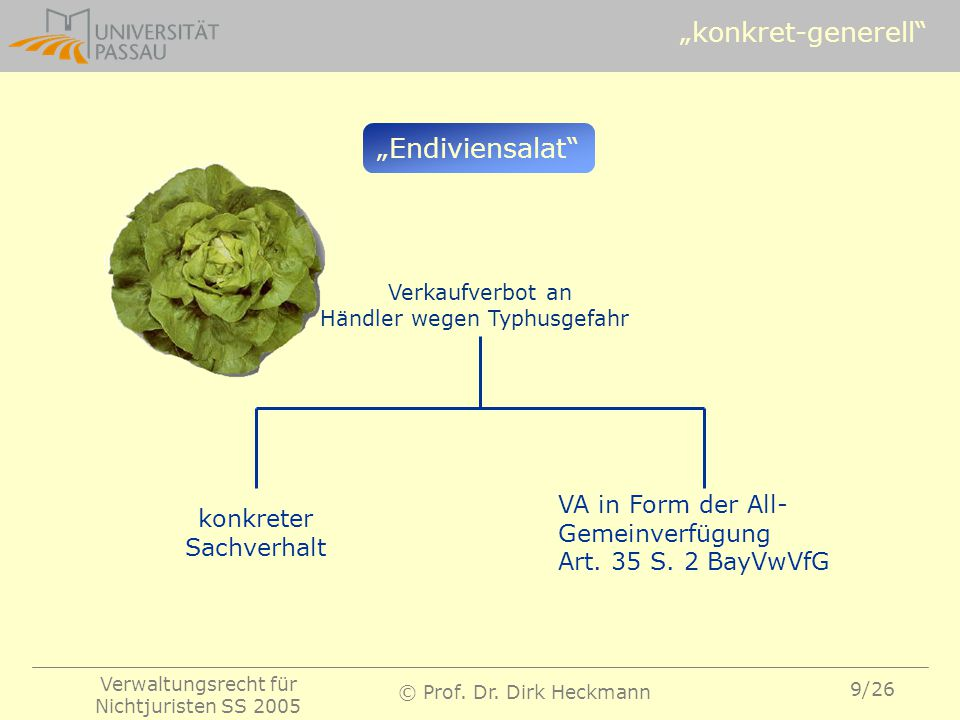 """konkret-generell ""Endiviensalat VA in Form der All-"
