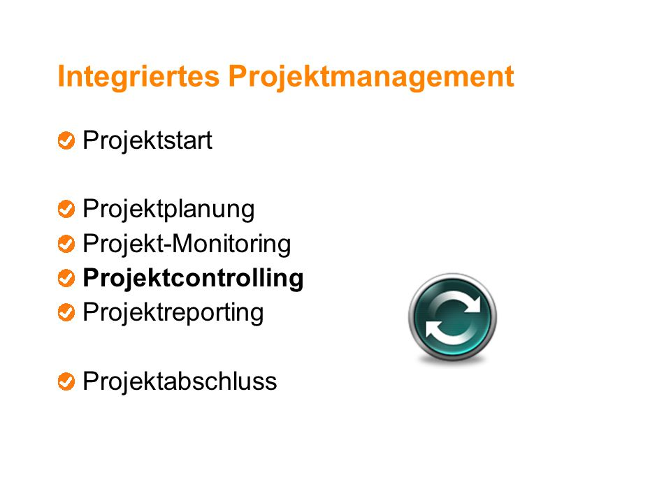 Integriertes Projektmanagement