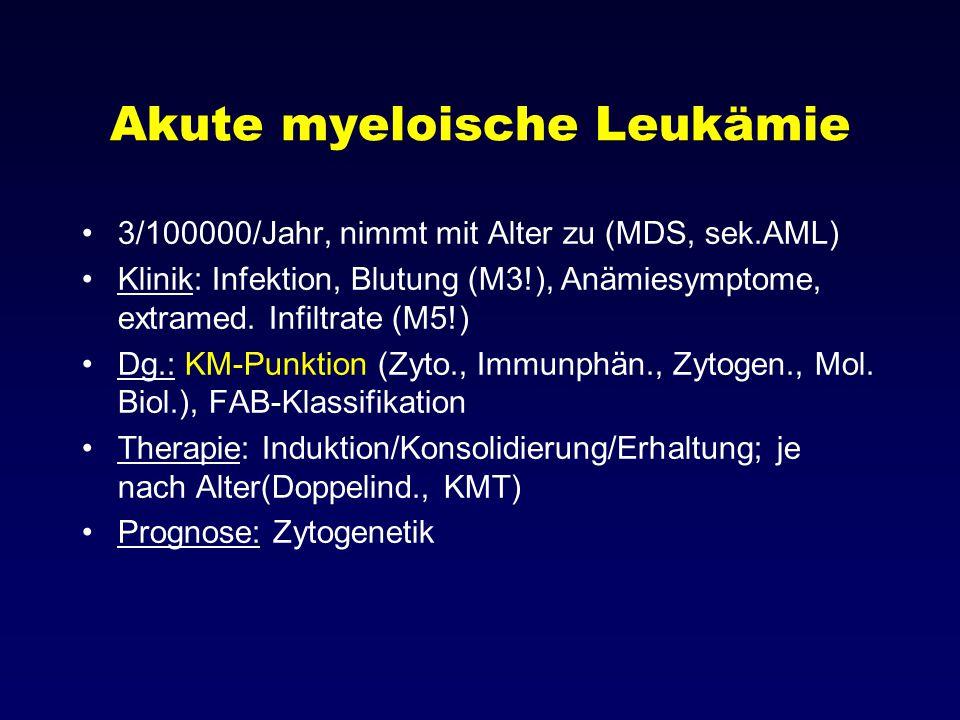 Akute myeloische Leukämie