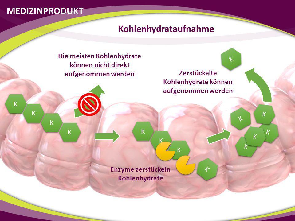 Kohlenhydrataufnahme