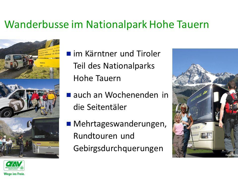 Wanderbusse im Nationalpark Hohe Tauern