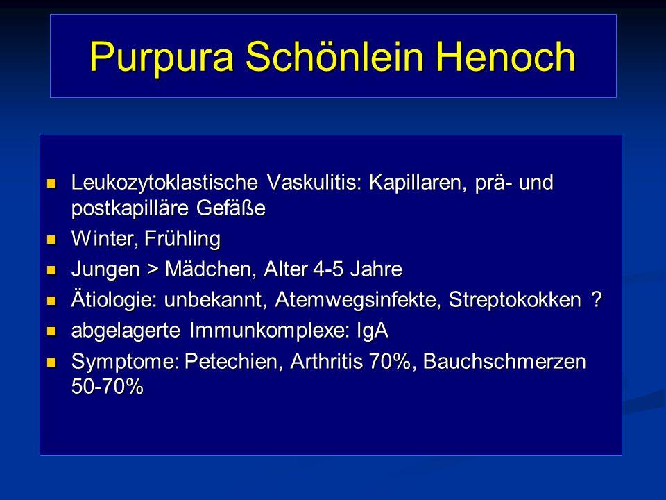 Purpura Schönlein Henoch