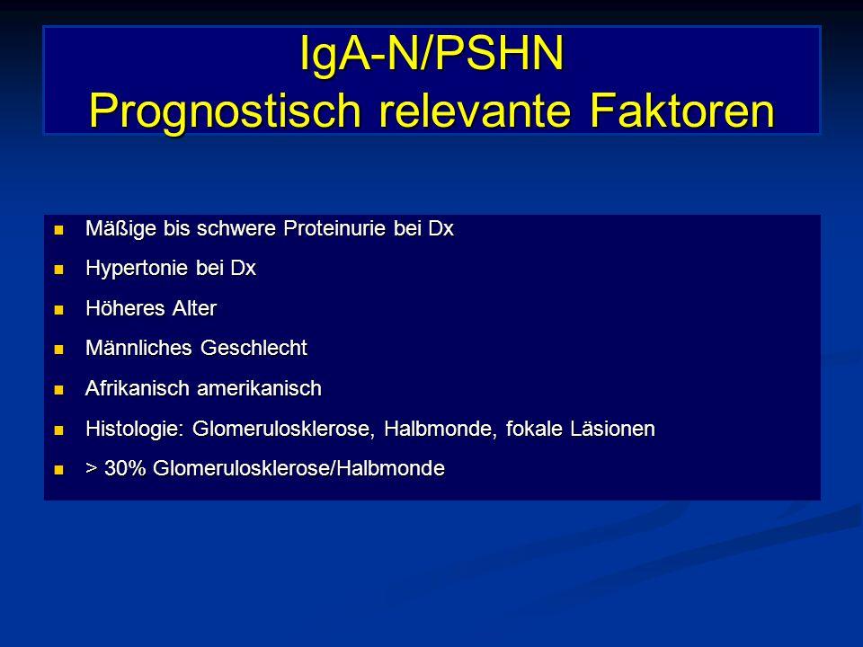 IgA-N/PSHN Prognostisch relevante Faktoren
