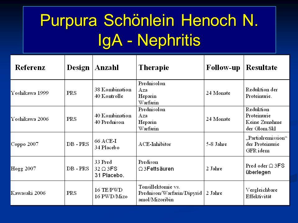 Purpura Schönlein Henoch N. IgA - Nephritis