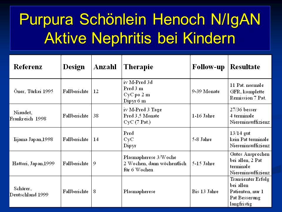 Purpura Schönlein Henoch N/IgAN Aktive Nephritis bei Kindern