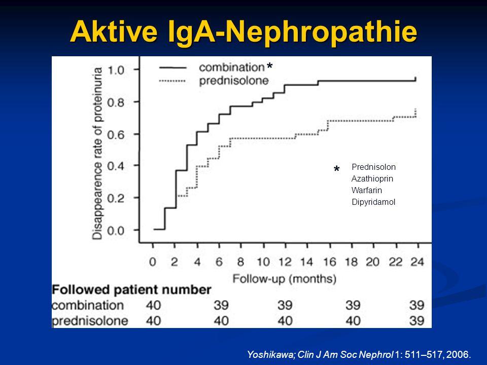 Aktive IgA-Nephropathie