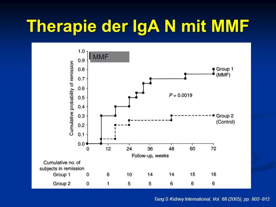 Therapie der IgA N mit MMF