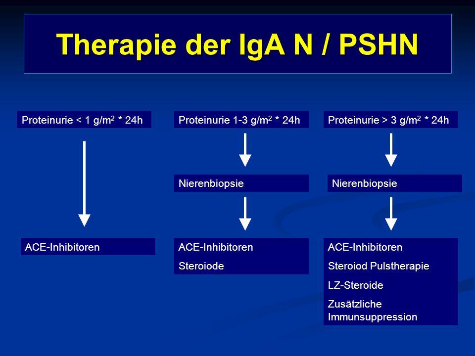 Therapie der IgA N / PSHN