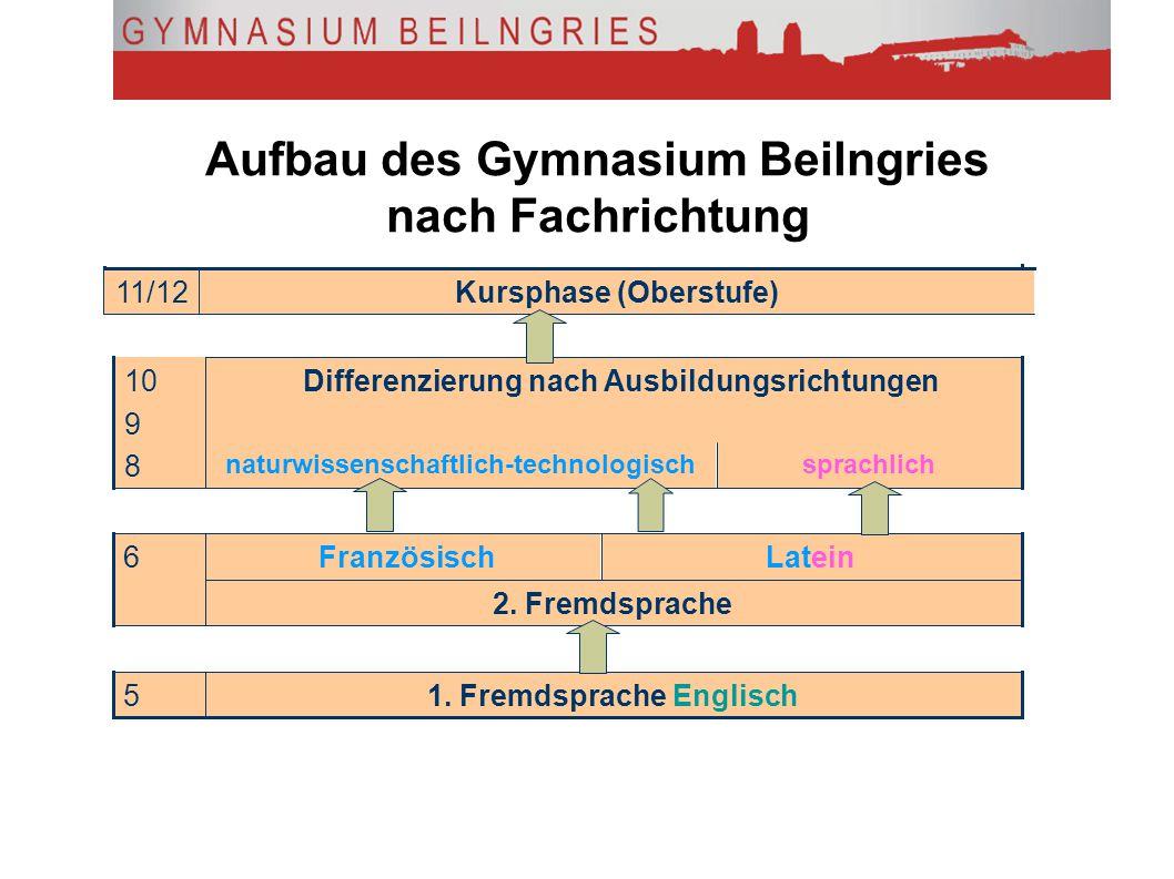 Aufbau des Gymnasium Beilngries nach Fachrichtung