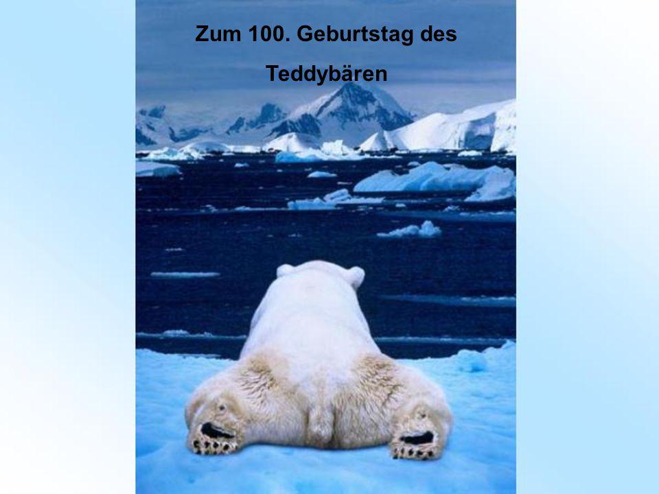 Zum 100. Geburtstag des Teddybären
