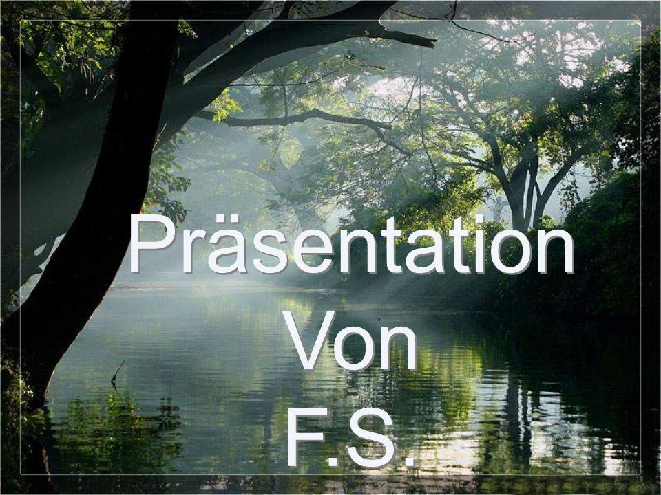 Präsentation Von F.S.