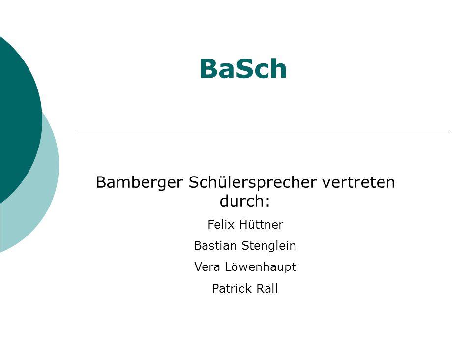 Bamberger Schülersprecher vertreten durch: