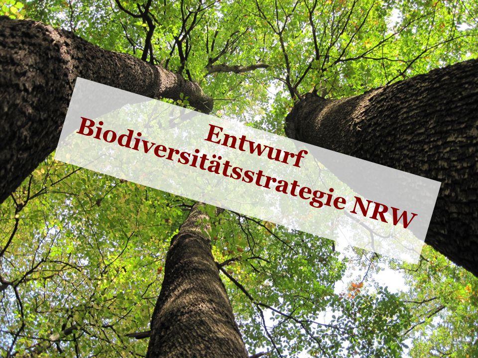 Entwurf Biodiversitätsstrategie NRW