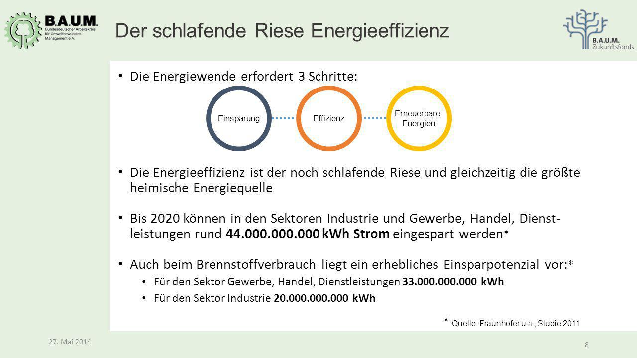 Der schlafende Riese Energieeffizienz