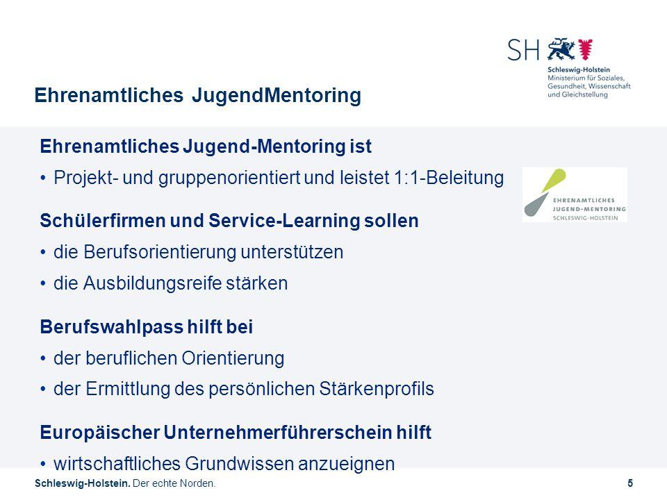 Ehrenamtliches JugendMentoring