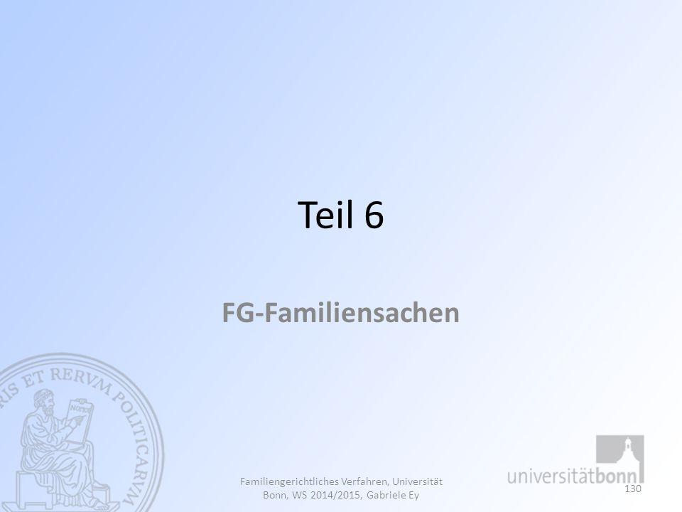 Teil 6 FG-Familiensachen