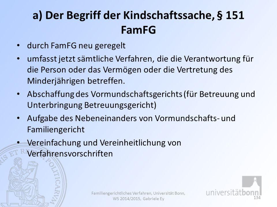 a) Der Begriff der Kindschaftssache, § 151 FamFG