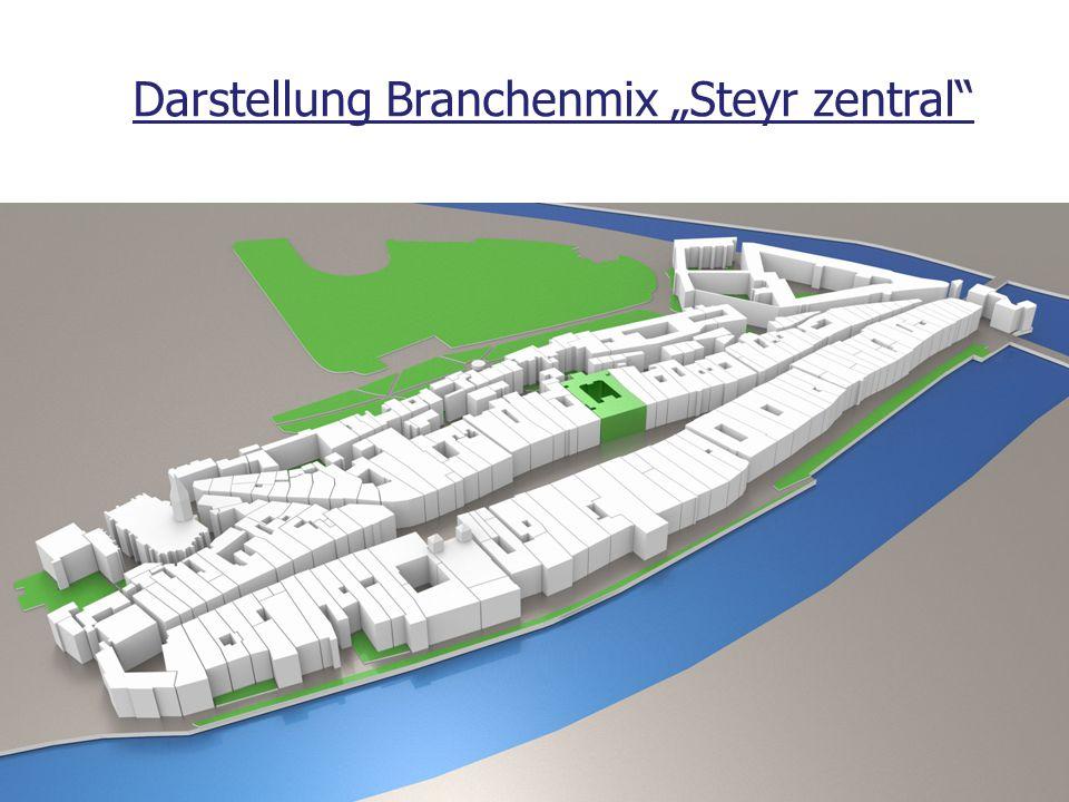 """Darstellung Branchenmix """"Steyr zentral"""