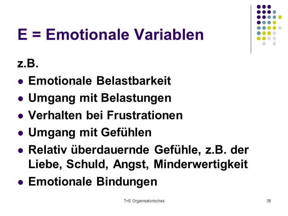 E = Emotionale Variablen