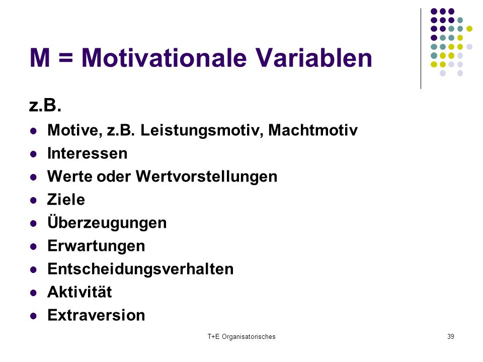 M = Motivationale Variablen