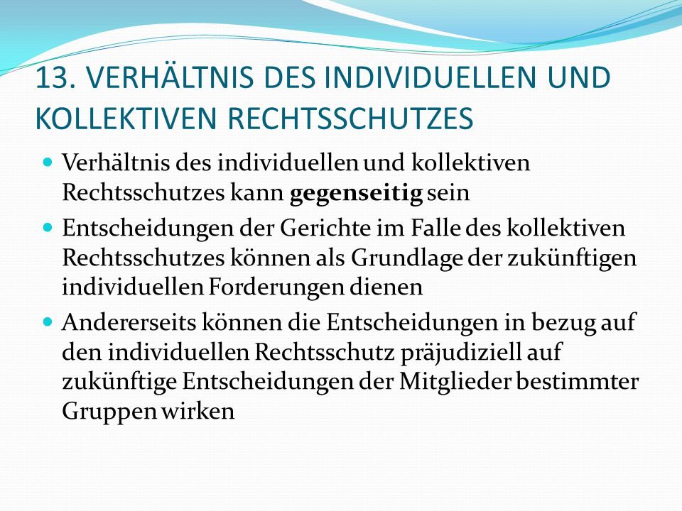 13. VERHÄLTNIS DES INDIVIDUELLEN UND KOLLEKTIVEN RECHTSSCHUTZES