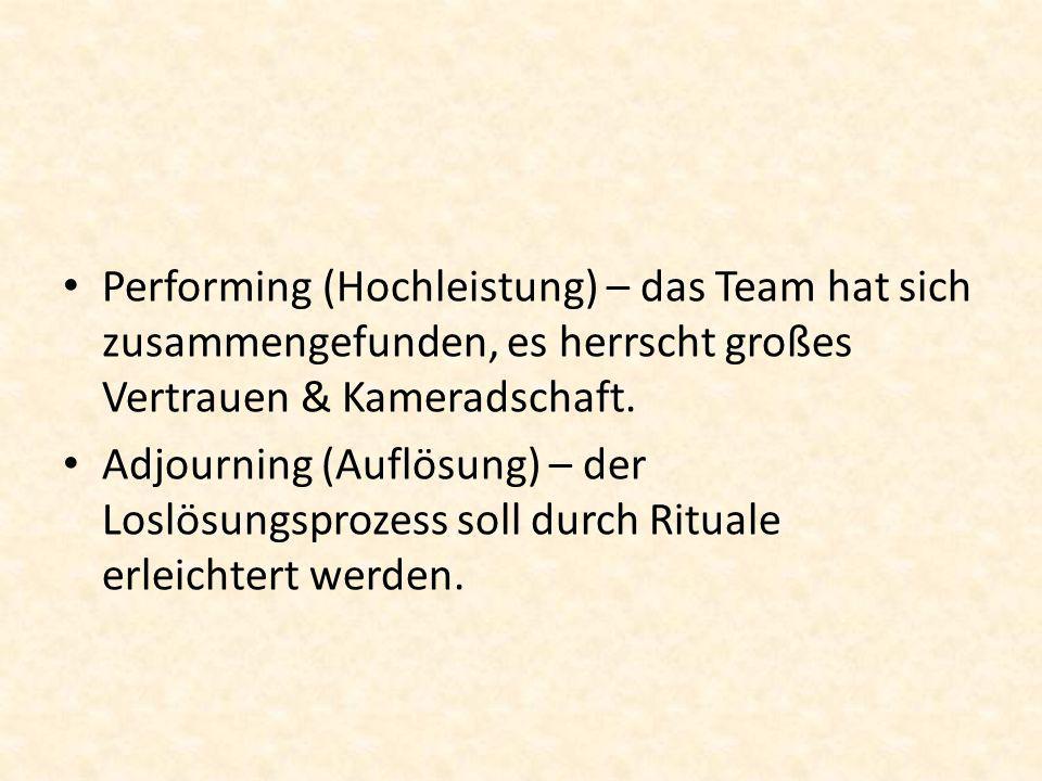 Performing (Hochleistung) – das Team hat sich zusammengefunden, es herrscht großes Vertrauen & Kameradschaft.