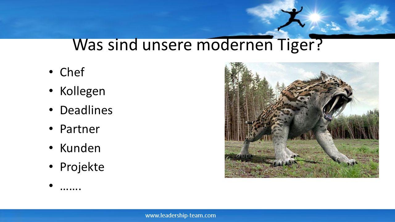 Was sind unsere modernen Tiger
