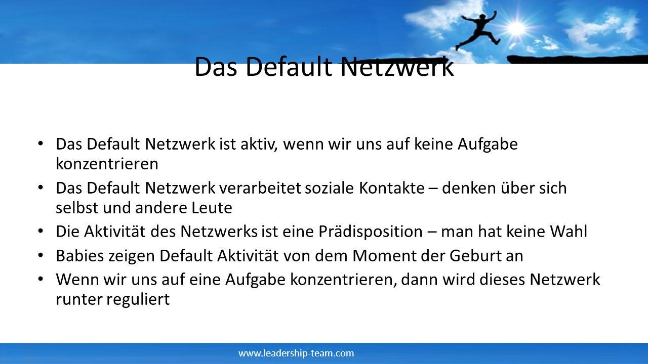 Das Default Netzwerk Das Default Netzwerk ist aktiv, wenn wir uns auf keine Aufgabe konzentrieren.