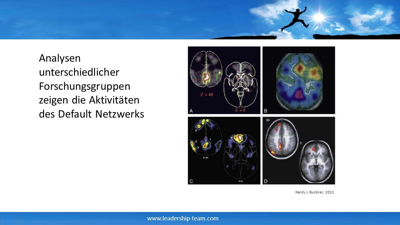 Analysen unterschiedlicher Forschungsgruppen zeigen die Aktivitäten des Default Netzwerks