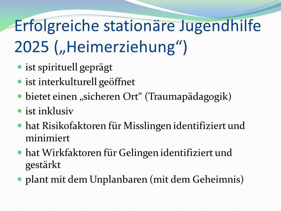 "Erfolgreiche stationäre Jugendhilfe 2025 (""Heimerziehung )"