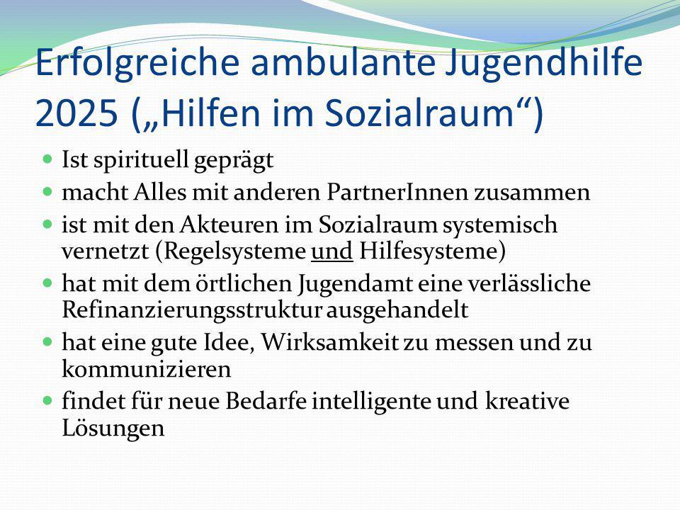 """Erfolgreiche ambulante Jugendhilfe 2025 (""""Hilfen im Sozialraum )"""