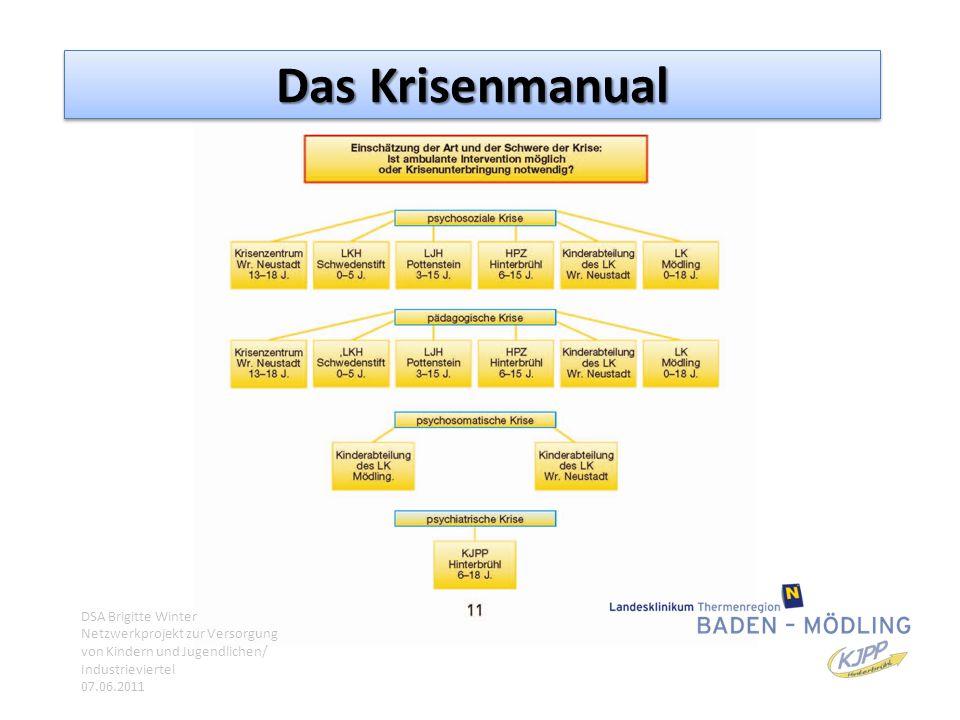 Das Krisenmanual DSA Brigitte Winter Netzwerkprojekt zur Versorgung von Kindern und Jugendlichen/ Industrieviertel 07.06.2011.