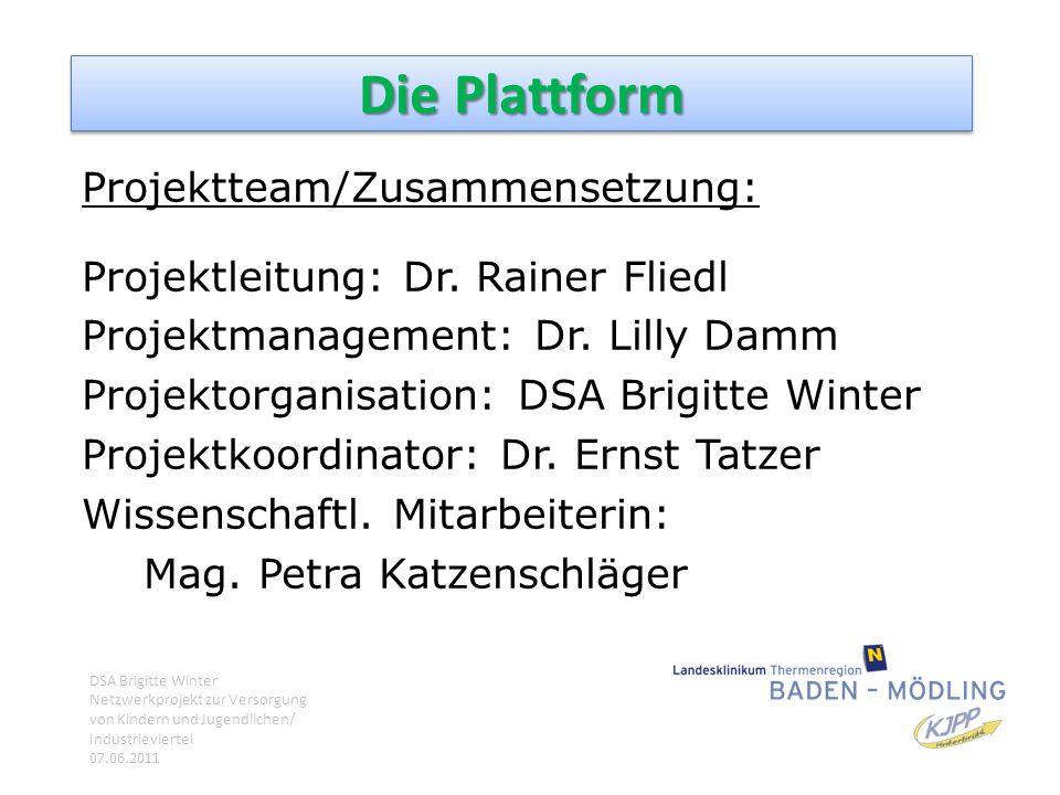 Die Plattform Projektteam/Zusammensetzung: