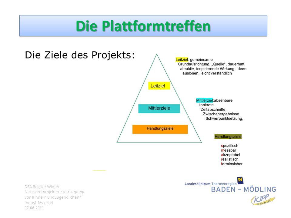 Die Ziele des Projekts: