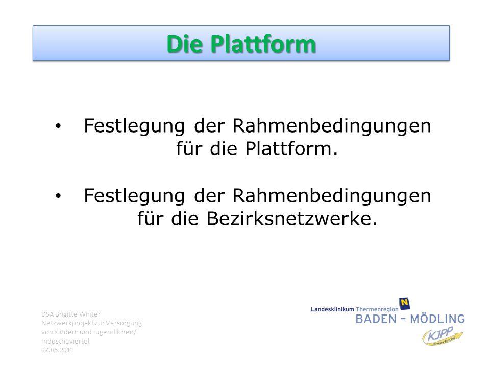 Die Plattform Festlegung der Rahmenbedingungen für die Plattform.